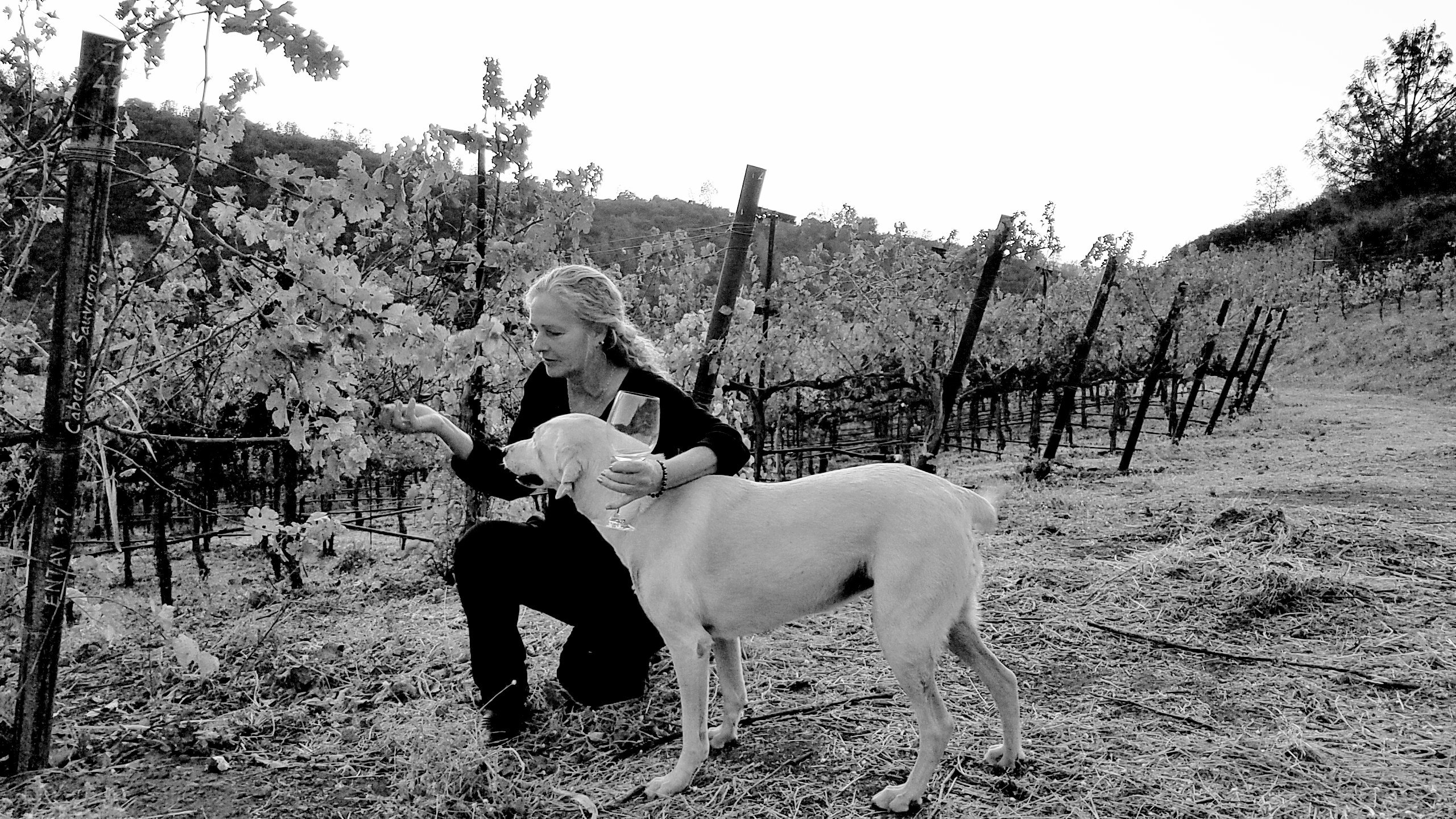 Jill Brothers of Sol Rouge winery enjoying wine in her vineyard.